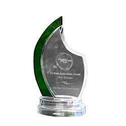 Best new entrant in Customer Service Innovation Awards by Institute of Customer Experience.